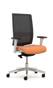 Office & home work Chairs